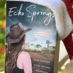 EchoSprings